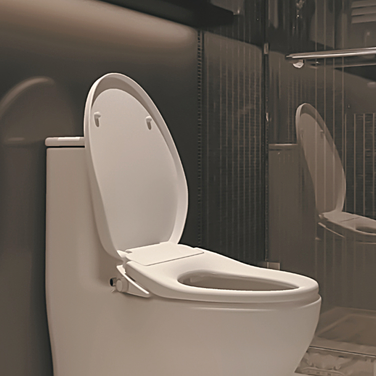 sanitary-ware-smart-bidet-heated-electric-automatic (2)